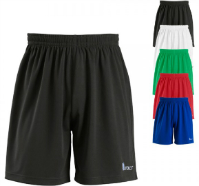 sols-teamsport-basic-shorts-borussia-lt90102