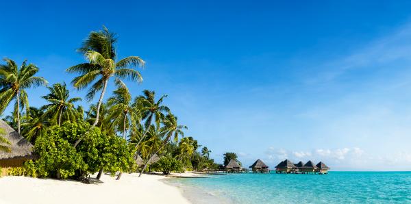 Bermuda Shorts für tropische Temperaturen
