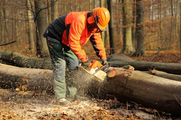 Auch Waldarbeiter haben spezielle Sicherheitsschuhe