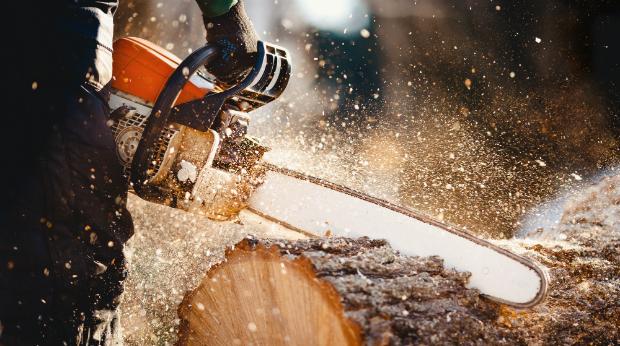 Stabile Arbeitsgürtel sind ein Muss beim Holzfällen