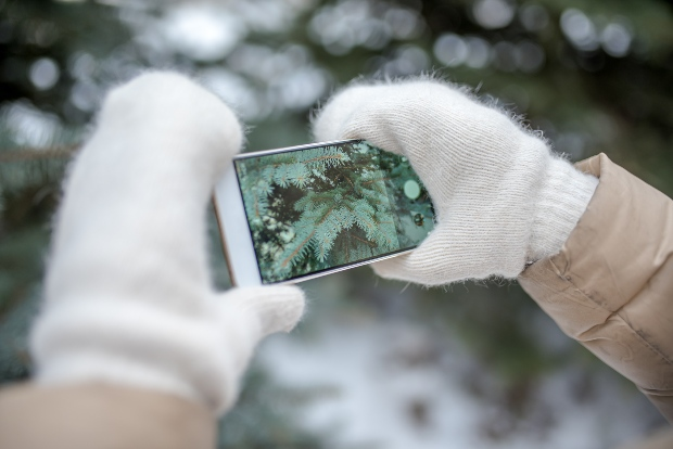 Frau mit Fäustlingen hält Handy in den Händen